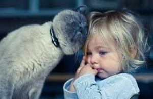 Ученые: детские переживания приводят к сердечно-сосудистым болезням во взрослой жизни