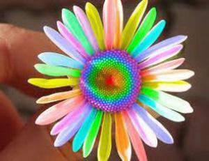 О значении цветка, подаренного вам