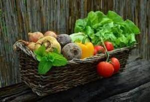 Биотехнолог объяснил, как распознать овощи ифрукты схимикатами