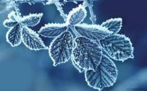 Мороз как омолаживающая процедура: извлекаем пользу из холода