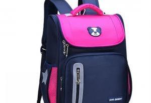 Рюкзак школьный: особенности выбора
