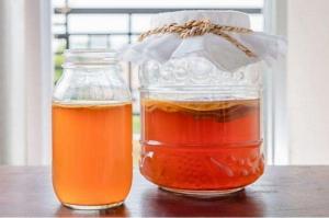Специалисты раскрыли уникальную пользу чайного гриба для здоровья