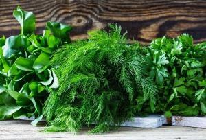 Как вернуть свежий вид зелени: самый простой лайфхак